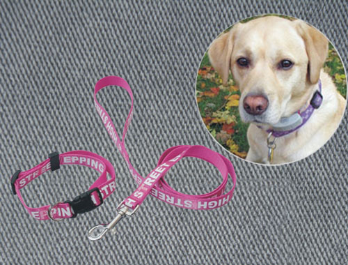 Dog Collars & Leashes 12